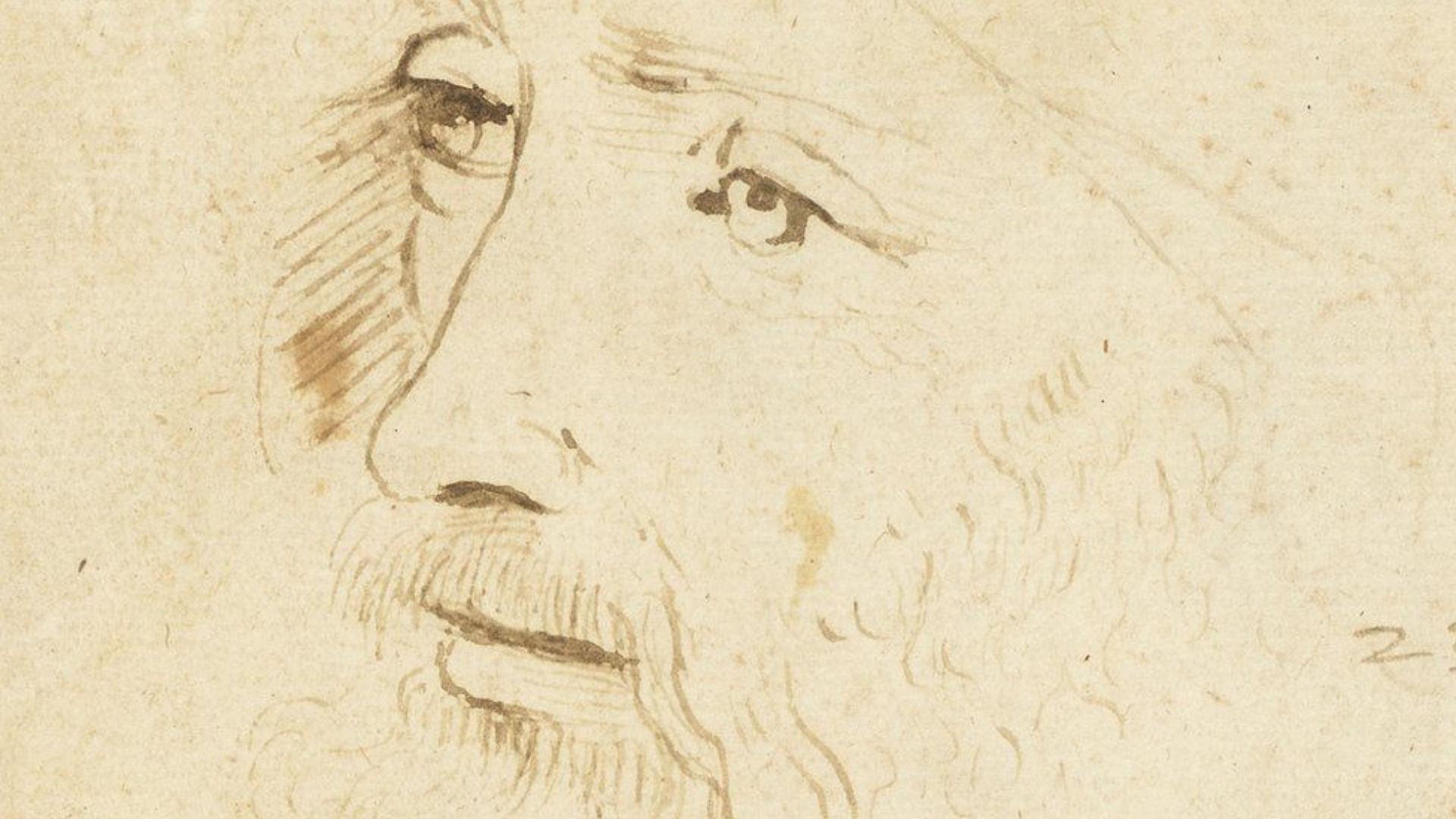 Da Vinci'nin Yeni Bir Portresi Keşfedildi