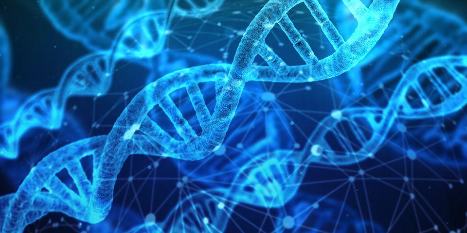 İnsan DNA'sı Eşsiz Bir Müziğe Dönüştürüldü