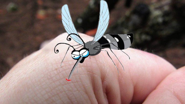 Bazı İnsanlar Neden Daha Fazla Sivrisinek Saldırısına Maruz Kalıyor?